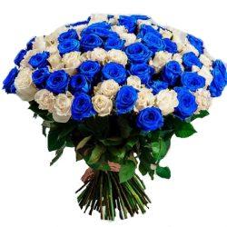 букет 101 белая и синяя роза (крашеная)