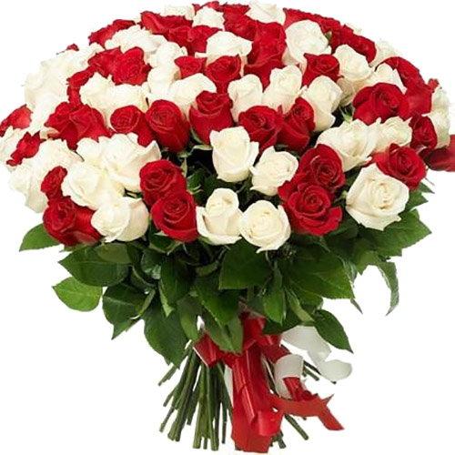 товар 101 красная и белая роза в Киеве