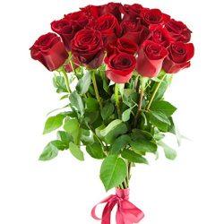 букет 15 импортных роз