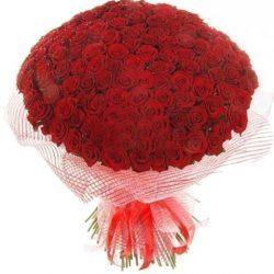 фото букета 201 красная роза
