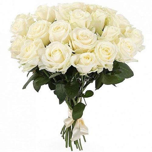 товар 21 белая роза в Киеве
