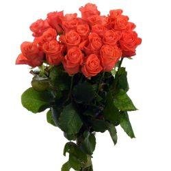 "товар 21 роза ""Вау"""