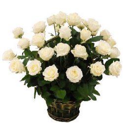 фото букета 35 белых роз в корзине