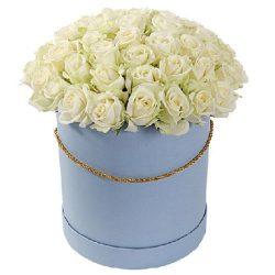 картинка 51 роза белая в шляпной коробке