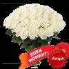 акционный товар 51 белая роза (50 см)