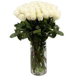 Роза импортная белая (поштучно) товар
